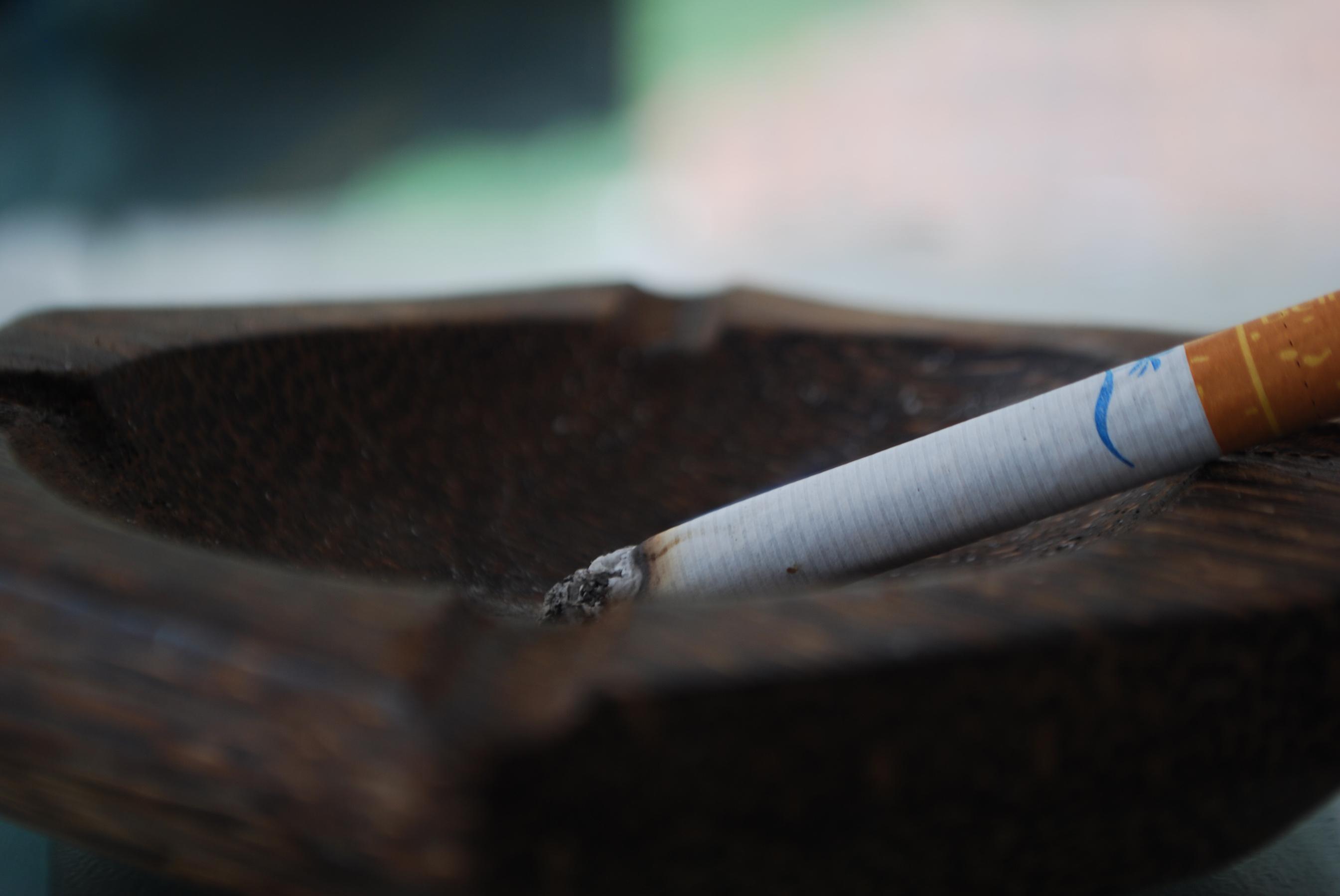 Marlene Fumando espero 6 x 8, 067